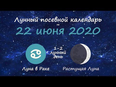 [22 июня 2020] Лунный посевной календарь огородника-садовода