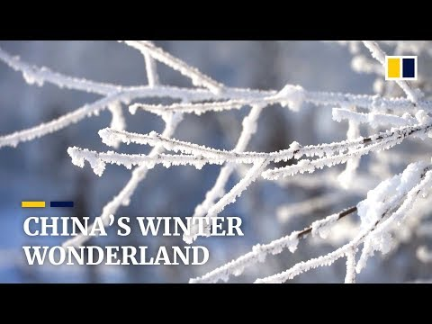 Poor Village In China Turns Into 'winter Wonderland' For Tourists