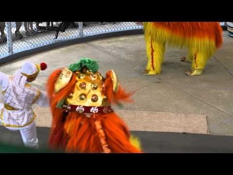Chinese Performers (Watch in HD)