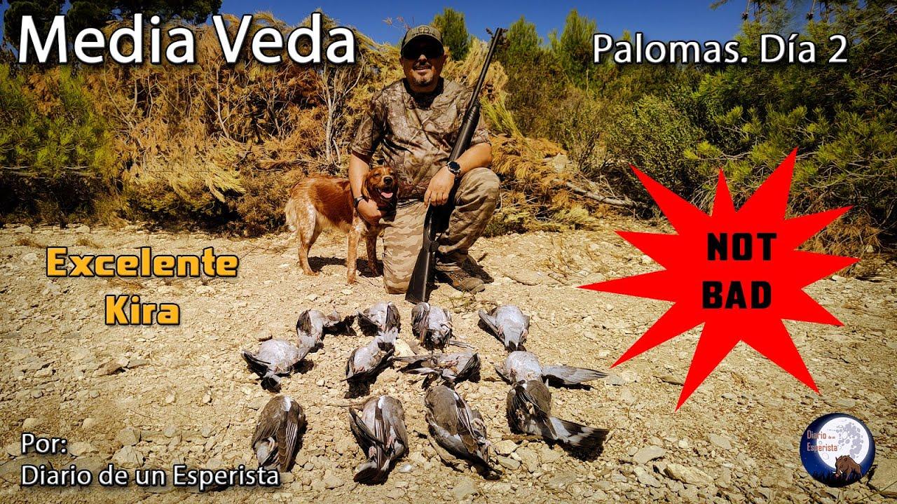 Download Segundo día de Media Veda. Caza de Palomas 21-22