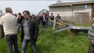 Vente aux enchères de matériel agricole à la suite de la faillite d'un éleveur de lapins