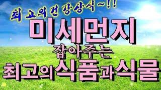 미세먼지 잡아주는 최고의 식품 15가지와 공기정화 식물 8가지 ~!