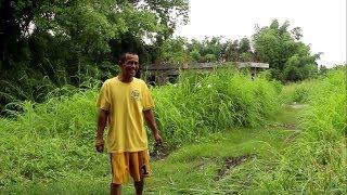 KAYOD | a documentary film