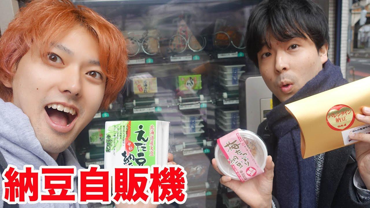 納豆を自販機で購入するおるたなチャンネルの壁紙