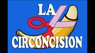 Parlons de masculinités n°1 : La circoncision