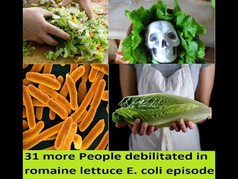 31 more People sick in romaine lettuce E  coli outbreak