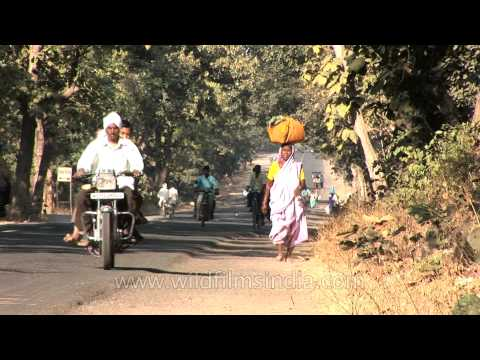 Go-vigyan Anusandhan Kendra - promoting Panchagavya Ayurved