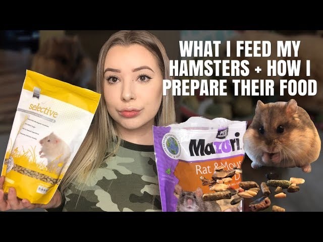 my-hamster-diet-what-i-feed-how-i-prepare-it