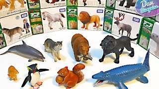 DINOSAURS, FARM ANIMALS & SEA ANIMALS TOY COLLECTION for Kids Takara Tomy Learn Fun Animal Names