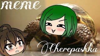 Морская черепашка по имени Наташка meme || Gacha life