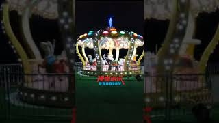 Carousel Ride Manufacturer