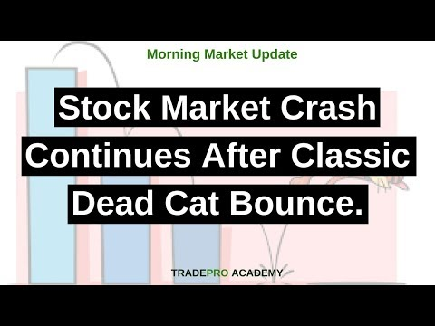 Stock market crash continues after classic dead cat bounce. - YouTube
