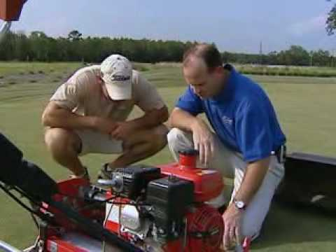 Golf and Sports Turf Management