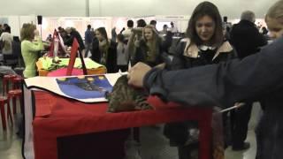Международная выставка кошек Гран-при Royal Canin'2014