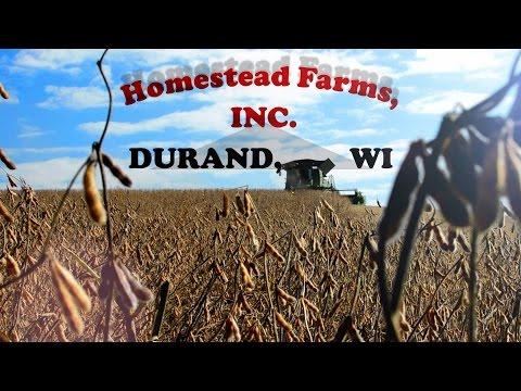 Homestead Farms: 125 Years