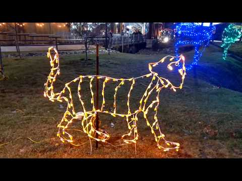 Turtle Back Zoo Holiday Lights December 23, 2019
