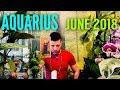 AQUARIUS June 2018 - IMPORTANT TRANSITION & Love - Aquarius June Horoscope Tarot