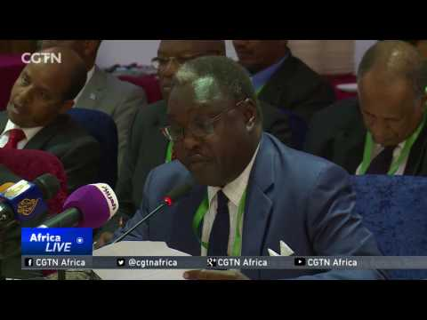 South Sudan urges donors to continue supporting peace process