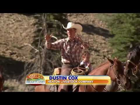 Utah Cattle Drive Special Episode - America's Heartland