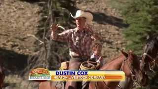 Utah Cattle Drive Special Episode - America