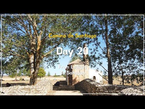 [Camino de Santiago] #DAY 20 / Ledigos - Sahagun