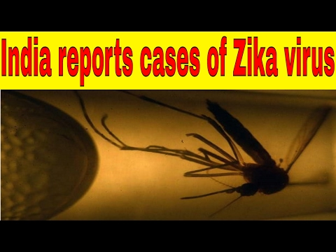 WHO says India reports cases of Zika virus 2017|Fims News