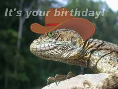 Happy Birthday, Funny Country Western Style!