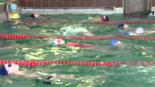 Открытый урок в бассейне.