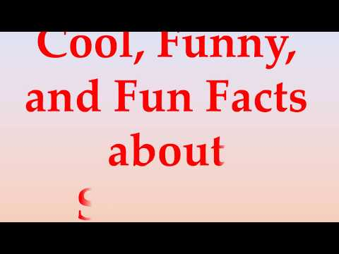 Cool, Funny, and Fun Facts about Slovakia