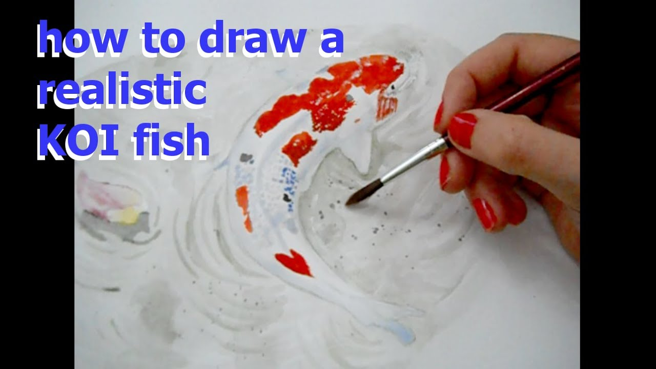 How to draw and paint koi fish in watercolor tutorial for How to paint a fish