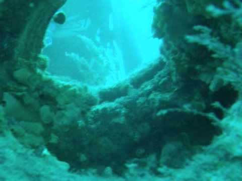 Diving The Glenelg Tire Reef - Out from West Beach, Adelaide