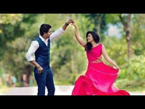 New ringtone Status 2018 Video Hindi & Panjabi PKB Rajasthani