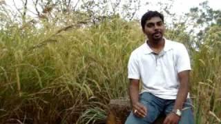 My First Kannada Shayari