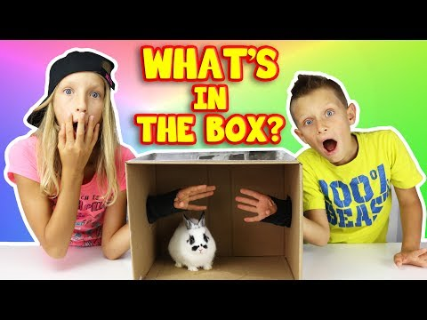 Thumbnail: What's in the Box Challenge!!!!!