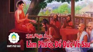 Kể Truyện Đêm Khuya. Làm Phước Để Đức Về Sau. Những Lời Phật Dạy