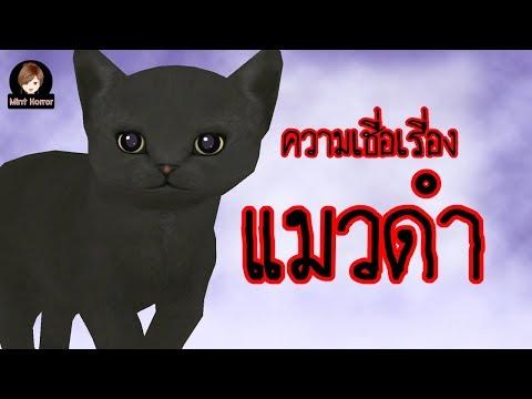 ความเชื่อเรื่อง แมวดำ สุดหลอน ผีไทย l การ์ตูนผีสุดหลอนมิ้นท์จัง