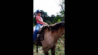 Andando à cavalo com o nosso papai
