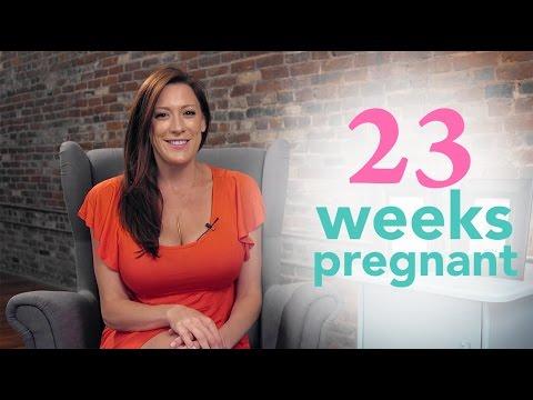 23 Weeks Pregnant Ovia Pregnancy