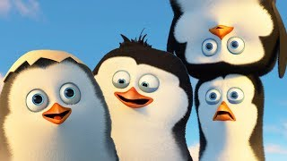 DreamWorks Madagascar | Best Penguins of Madagascar Scenes - Funny Action Moments | Kids Movies