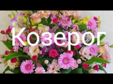 Козерог Таро-гороскоп с 18.03 по 24.03 2019 г.