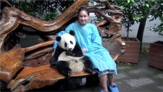 HD - Chengdu Giant Panda Breeding Research Base - Cuddling / Holding a Panda!