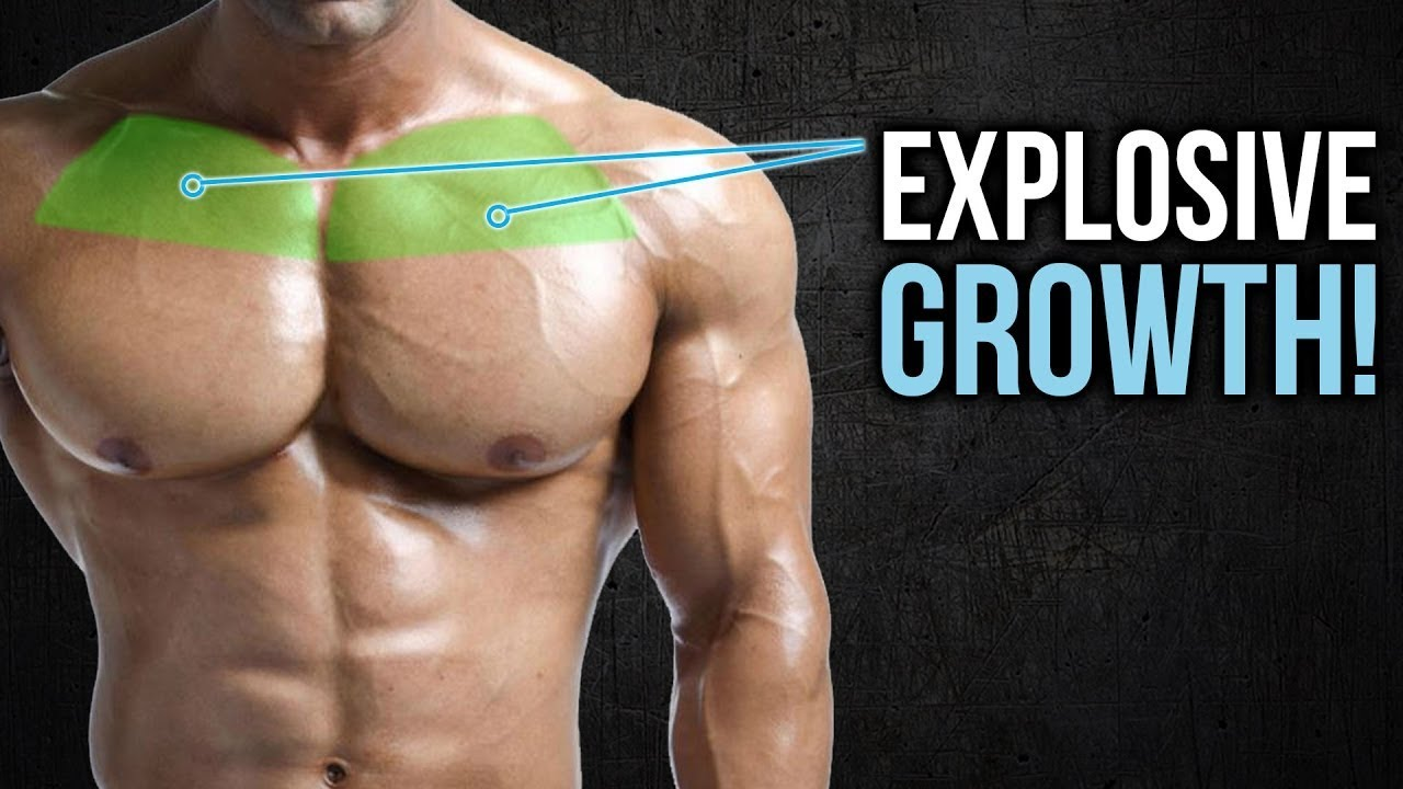 CHEST WORKOUT Build Your Chest Bigger and Wider