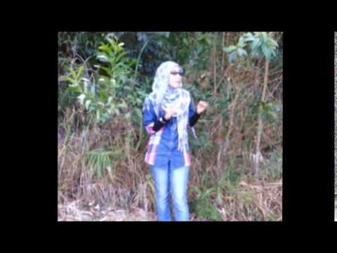 Tajuk: Kepentingan Hutan