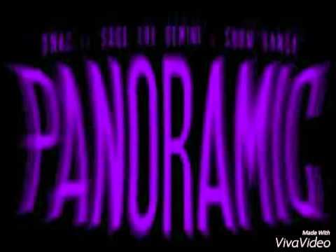 Panoramic-Sage The Gemini Ft.D-Mac