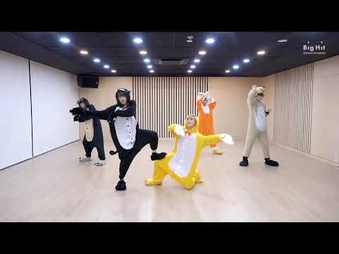 TXT(Tomorrow X Together)Cat & Dog Dance Practice (Animal Ver.)