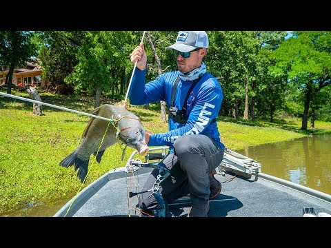 Bowfishing Nasty Invasive Species