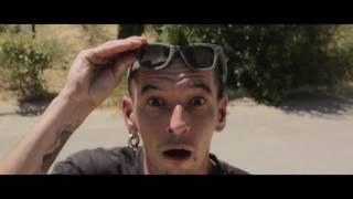 Délit de sale gueule- Bob's NoT Dead! - clip officiel