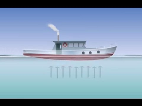 Archimedes Principle - Class 9 Tutorial