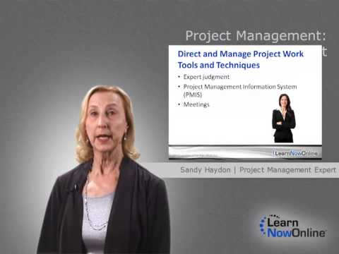 Trailer for Project Management: Executing a Project