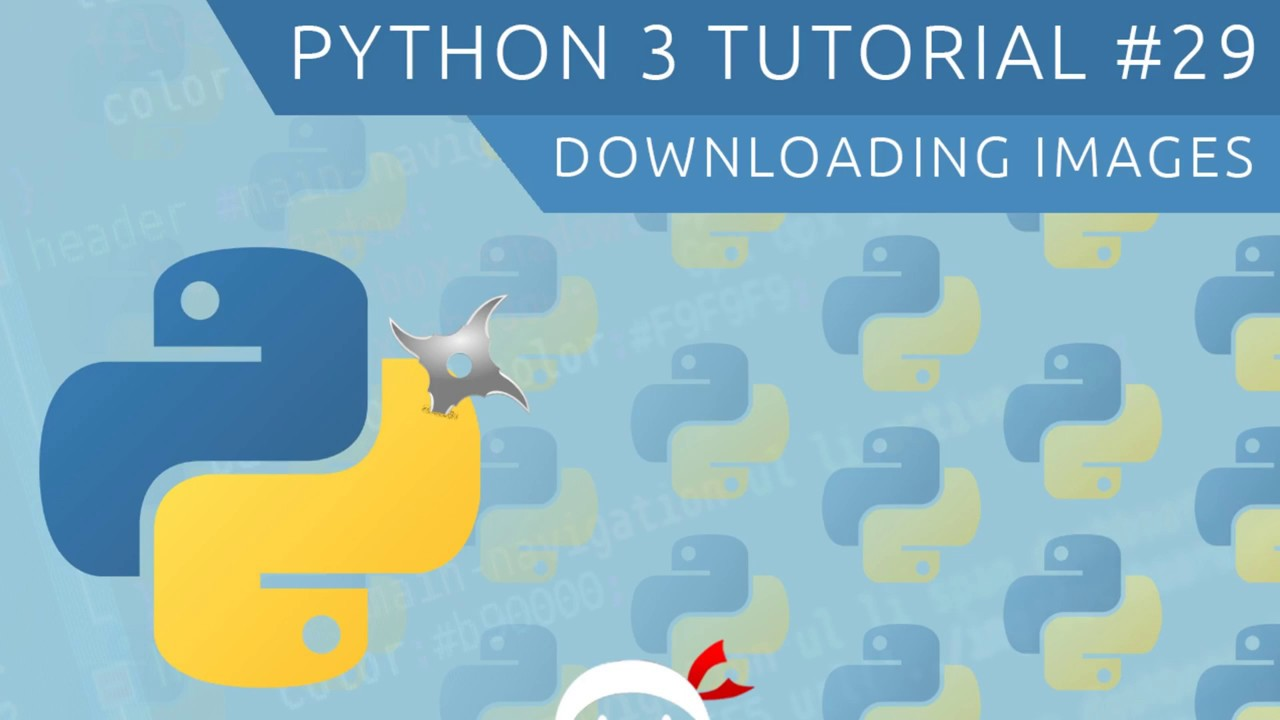 Python 3 Tutorial for Beginners #29 - Downloading Images